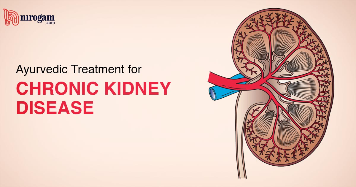 Is there Effective Ayurvedic Treatment for Chronic Kidney Disease or Kidney Failure?