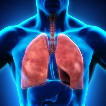 Ayurvedic treatment for Lungs & Respiration