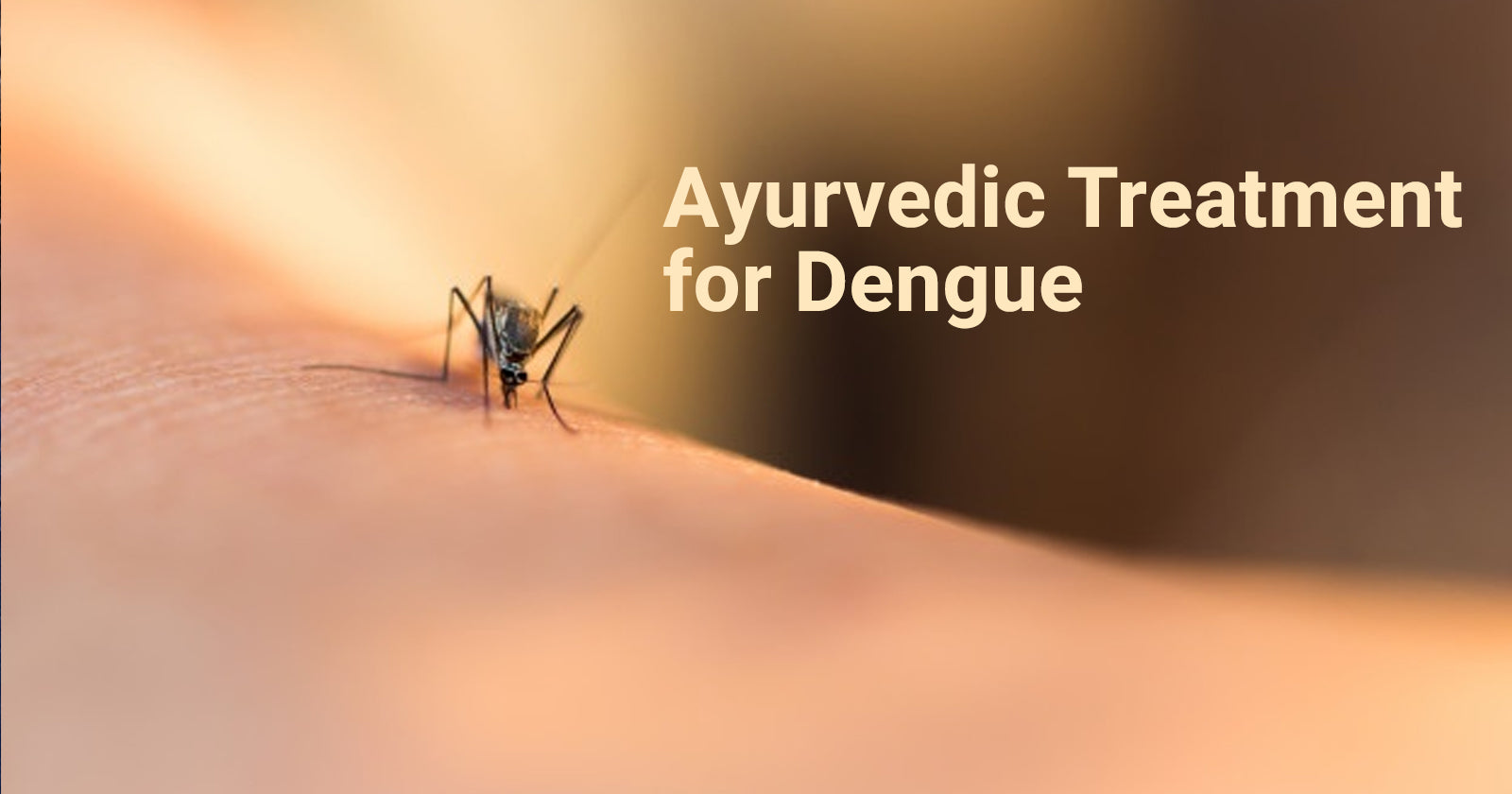 Dengue treatment in ayurveda