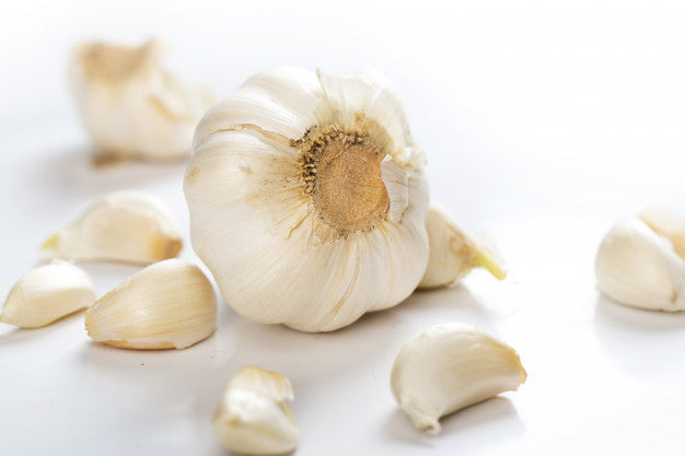 garlic an ayurvedic medicine for cholesterol