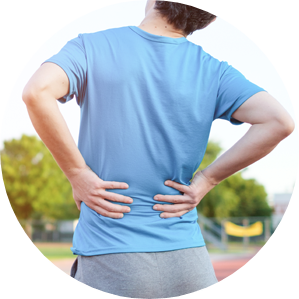 Acts as an Ayurvedic medicine for lower back pain
