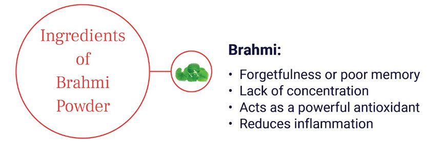 brahmi powder for brain