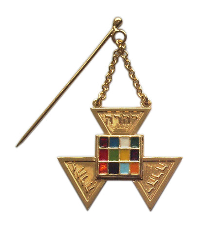 Allied Masonic Degrees Past Master Jewel