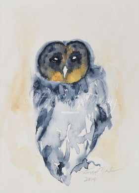 Owl by Peggy O'Neil