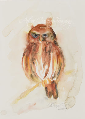 Small Red Owl by Peggy O'Neil