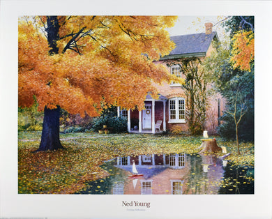 Evening Reflections by Ned Young