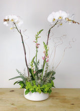 Load image into Gallery viewer, Orchid & Flowers Arrangement