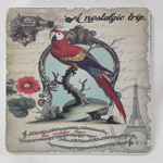 6 x Parrot Coasters