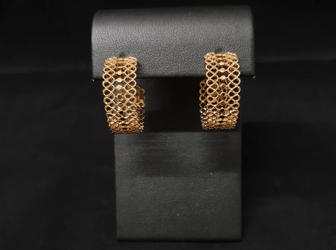 Gold lined earings