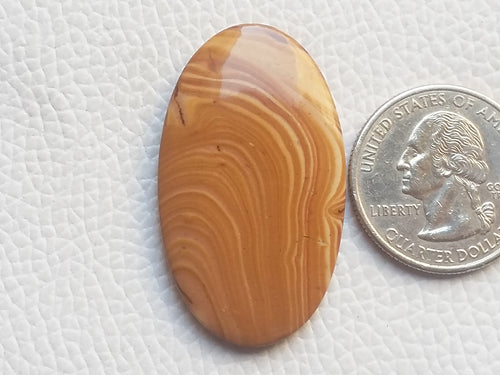 40x23x5 mm, Wood Canyon Natural Thin Cut Oval Shape