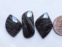 Load image into Gallery viewer, 3 Pieces Natural Black Striped Jasper Mix Shape