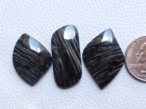 3 Pieces Natural Black Striped Jasper Mix Shape