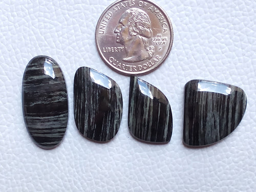 4 Pcs Lot Natural Black Striped Jasper Mix Shape