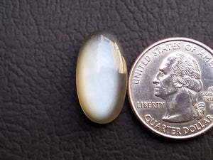 22x12x6mm, AAA Grey  Moonstone Oval Shape