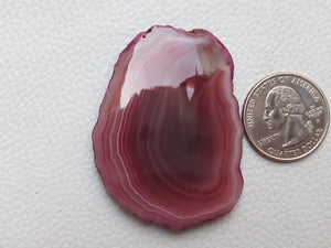 53x40x6 mm Geode Agate Slice Dyed Freeform Shape