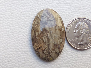 38x25x5 mm Crazy Lace Agate Oval Shape