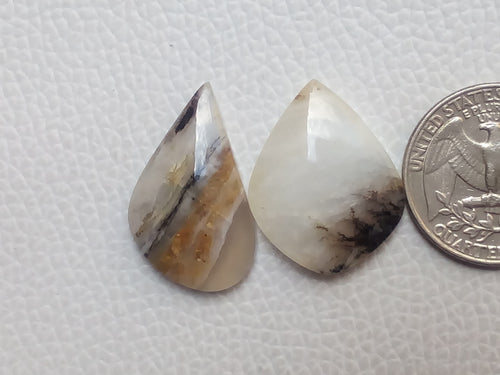 2 Pcs Botswana Agate Freeform Shape