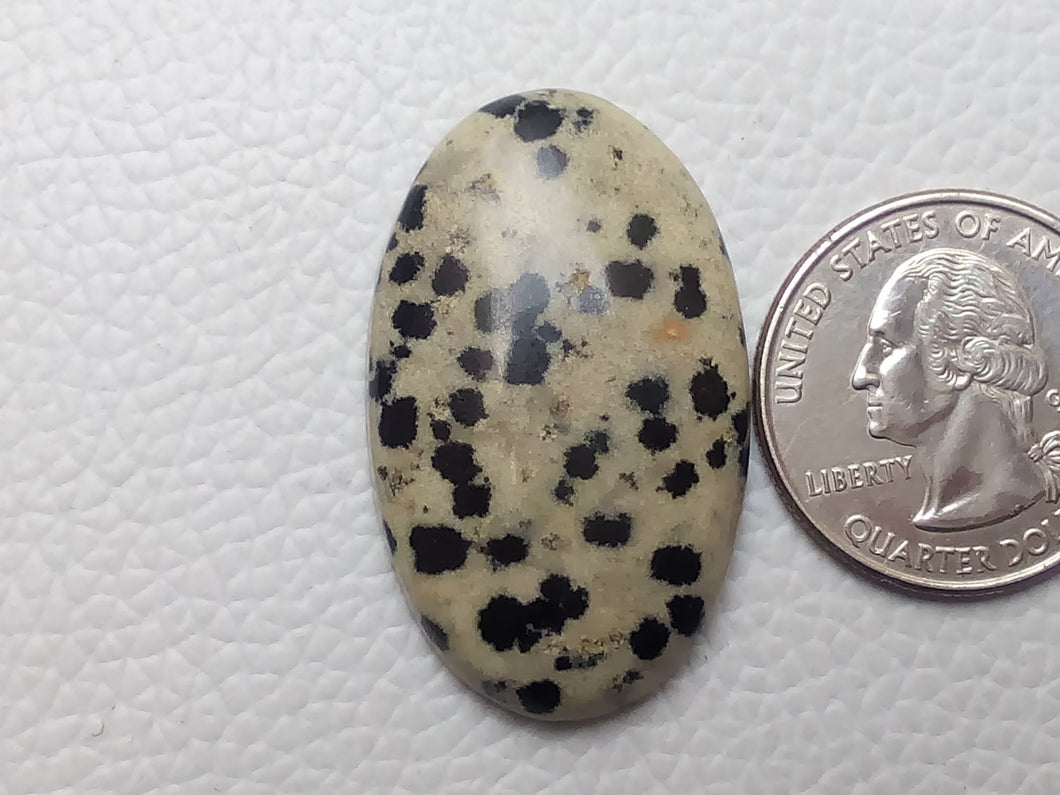 37x22x7 mm Natural Dalmatian Jasper Oval Shape