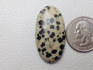 38x20x7 mm Natural Dalmatian Jasper Oval Shape