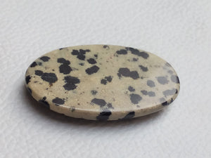 43x25x7 mm Natural Dalmatian Jasper Oval Shape