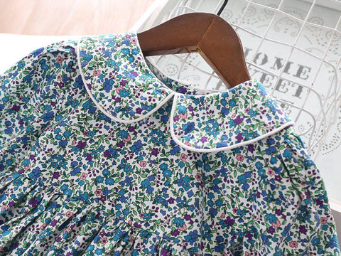 Beautiful Floral Print Dress,Blue/Red,2Y-7Y.