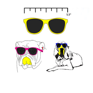 CKlarity Large Dog Glasses