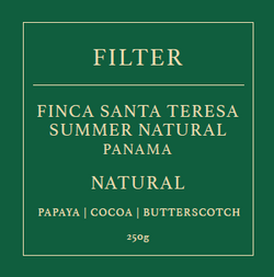 Brewtown Beans - Finca Santa Teresa Summer Natural (FILTER )