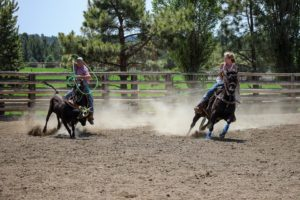roping performance horse
