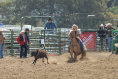 rodeo breakaway college