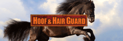 hair growth horse