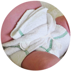 Seedling Baby Diversifolds - Prefold Nappies