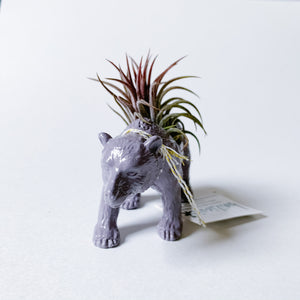 Purple Animal Air Planter - Grizzly Bear - Femme Wares Niagara Local Small Business