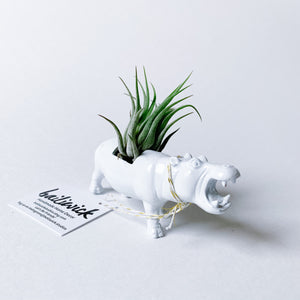 White Animal Air Planter - Hippo - Femme Wares Niagara Local Small Business