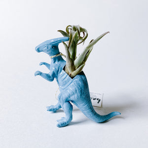 Blue Dinosaur Air Planter - Hammerhead - Femme Wares Niagara Local Small Business