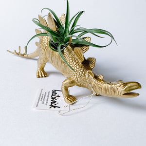 Gold Dinosaur Air Planter - Large Stegosaurus - Femme Wares Niagara Local Small Business