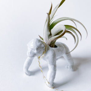 White Animal Air Planter - Chimpanzee - Femme Wares Niagara Local Small Business
