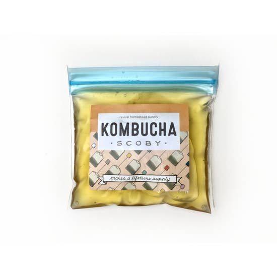 Kombucha SCOBY - Femme Wares Niagara Local Small Business