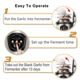 NPET GF10 Black Garlic Fermenter Automatic Fermenter