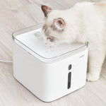 white cat water fountain