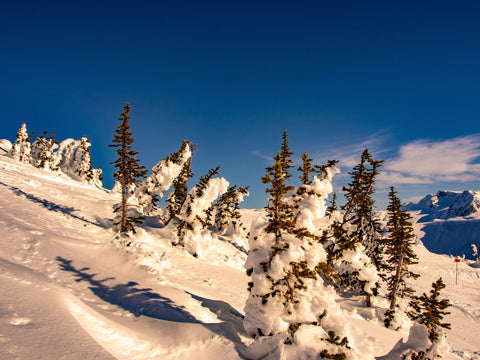 Canadian Whistler Winter #2