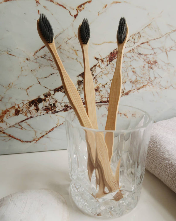 Bamboo Charcoal Toothbrush Box of 4 (Family Pack)