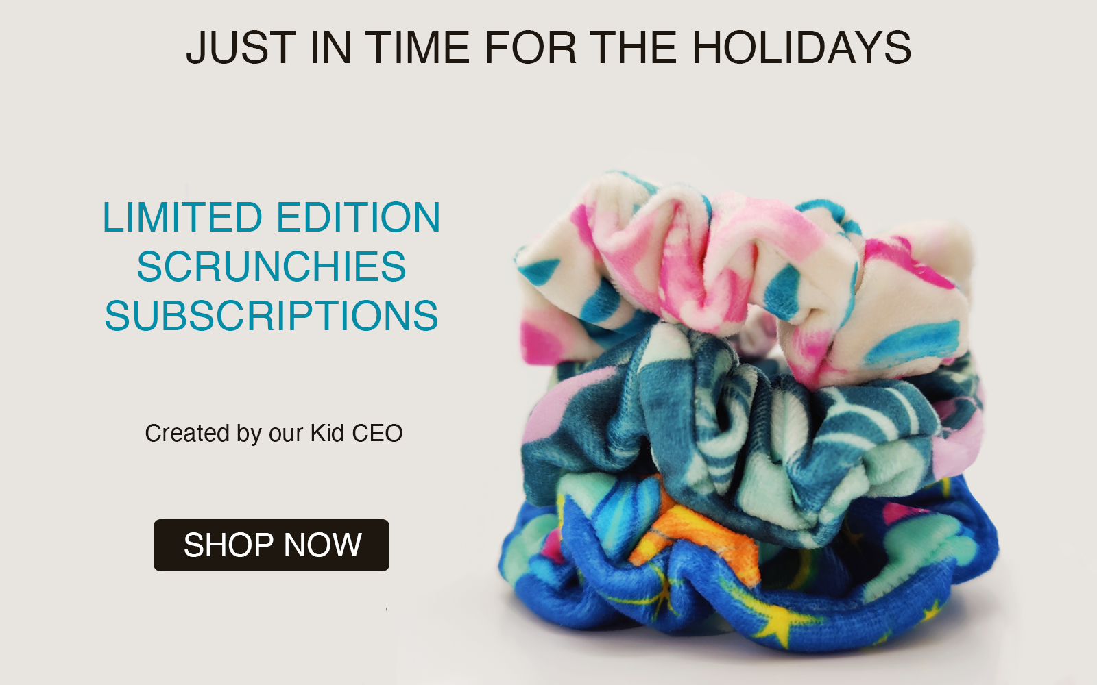 just in time for the holidays - limited edition scrunchies subscriptions