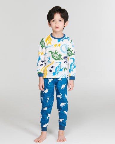 Boys Long Sleeve 2 Piece Cotton Pajama Set - Dinosaur