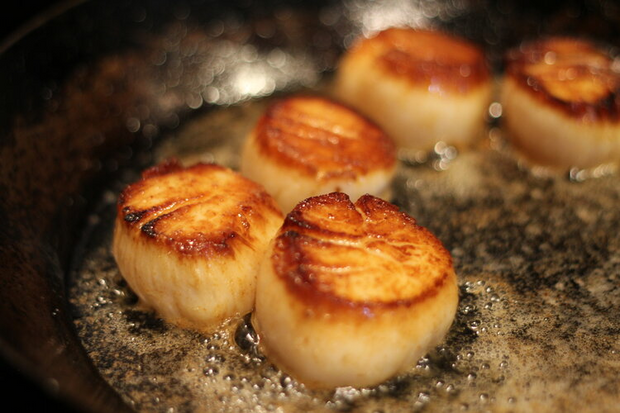 Large Dayboat Scallops