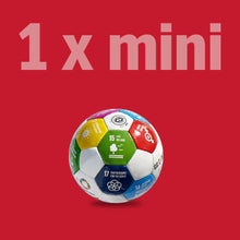 Load image into Gallery viewer, 1 x MINI Global Goals Ball