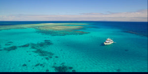 Full Day Snorkel the Outer Great Barrier Reef (P0T61P)