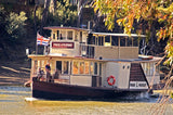 Pride of the Murray - 1 Hr Devonshire Tea Cruise