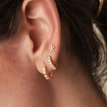 Load image into Gallery viewer, ROMA GOLD EARRINGS