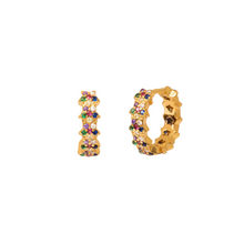 Load image into Gallery viewer, COLOURFUL OPERA GOLD EARRINGS