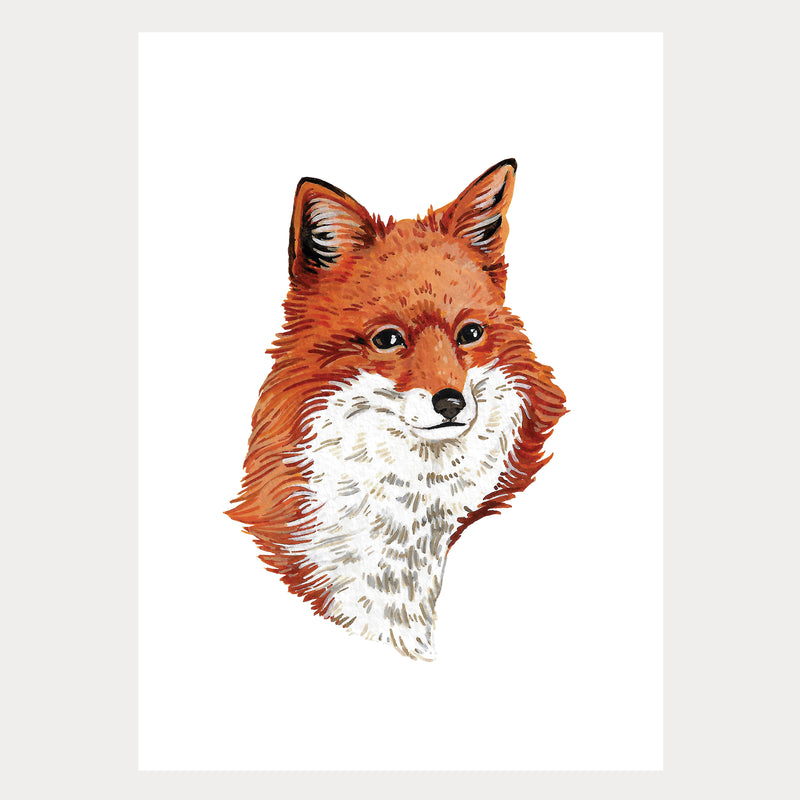 Canadian Wildlife Red Fox Artist Print